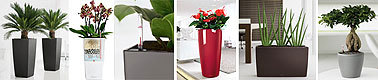lechuza pflanzgef e art jardin. Black Bedroom Furniture Sets. Home Design Ideas