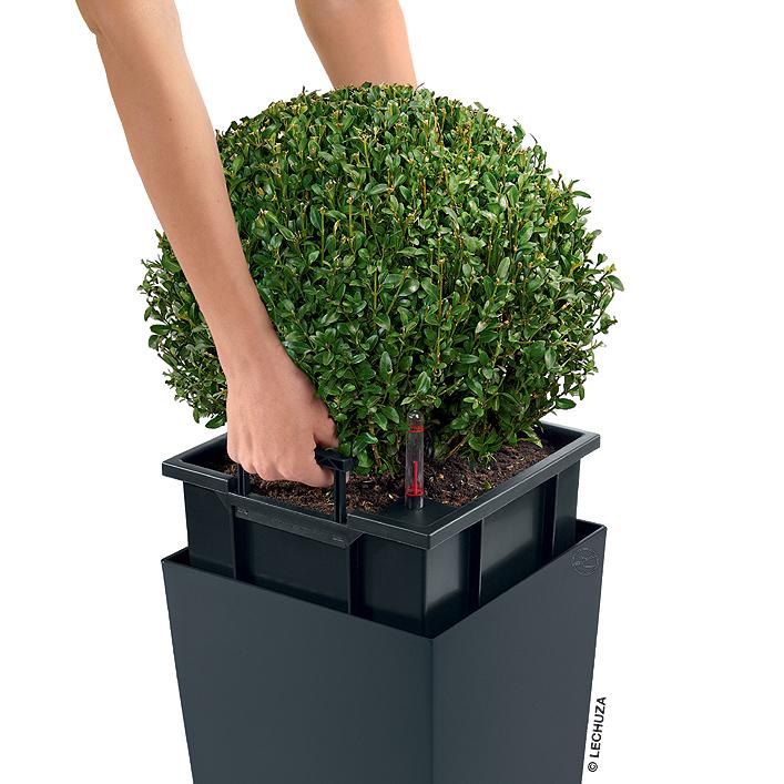 lechuza pflanzgefäß cubico 30 color komplettset kübel- art jardin, Garten und erstellen