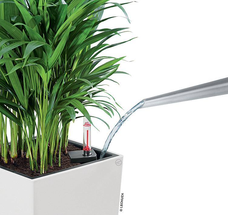 lechuza pflanzgef cubico 30 color komplettset k bel art jardin. Black Bedroom Furniture Sets. Home Design Ideas