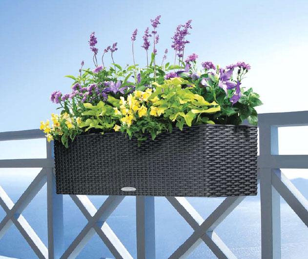 lechuza balkonkasten balconera cottage 50 pflanzk bel art. Black Bedroom Furniture Sets. Home Design Ideas
