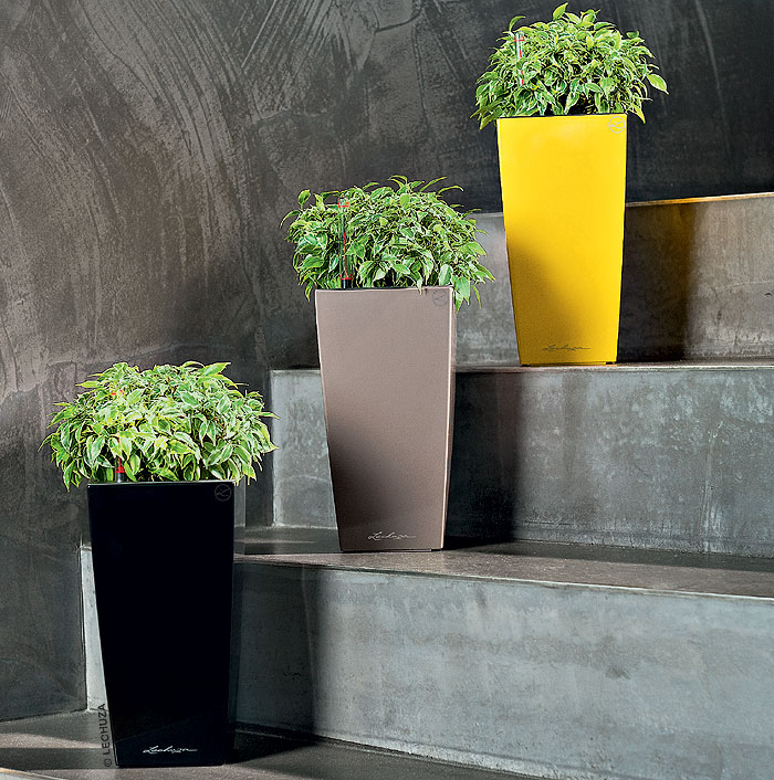 lechuza pflanzgef maxi cubi komplettset in 4 farben art. Black Bedroom Furniture Sets. Home Design Ideas
