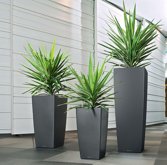 lechuza pflanzgef cubico alto 40 komplettset i6farb art jardin. Black Bedroom Furniture Sets. Home Design Ideas