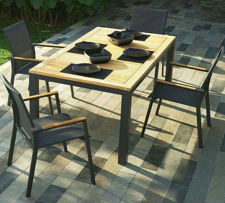 Zebra alu esstisch gestell 180x100cm alus 6220 graphit for Design tischplatten