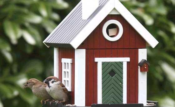 vogelhaus nistkasten schwedenkate wg101 futterhaus rot artjardin. Black Bedroom Furniture Sets. Home Design Ideas