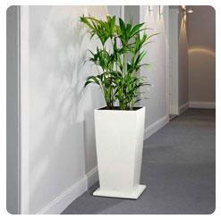 lechuza rolluntersatz cubico30 anthrazit wei schwarz art jardin. Black Bedroom Furniture Sets. Home Design Ideas