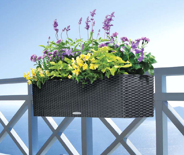 lechuza balkonkasten balconera cottage 80 pflanztrog art jardin. Black Bedroom Furniture Sets. Home Design Ideas